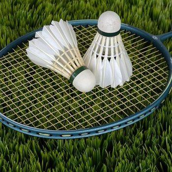 Rekreačný badminton - rakety a košík dostanete v Penzióne U Huberta na požiadanie