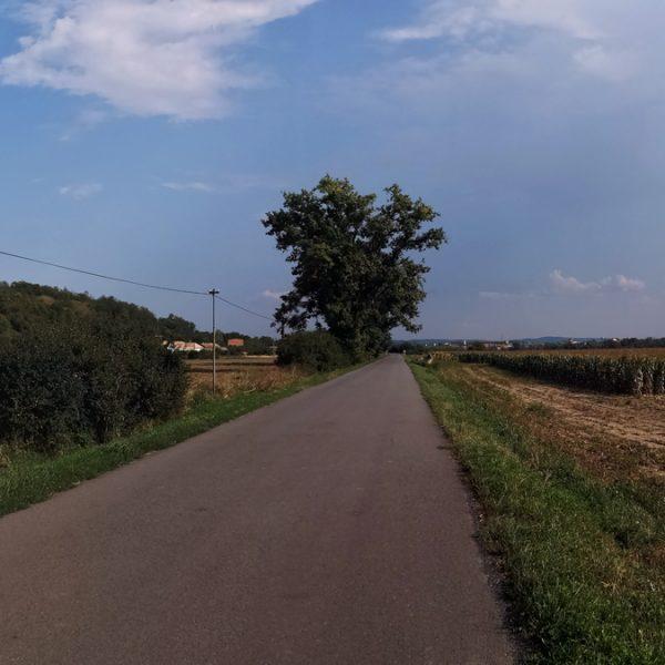 V okolí penziónu U Huberta sú viaceré cesty vo vynikajúcom stave, s minimálnou premávkou