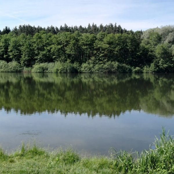 12 km od penziónu U Huberta sa nachádza komplex jazier